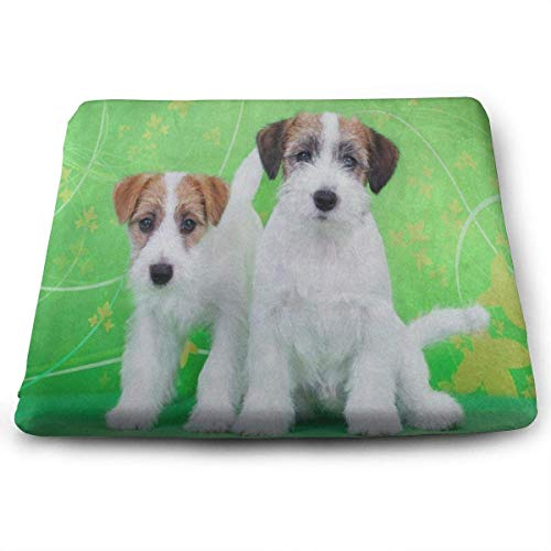Square Seat Cushions White Dog Puppy Green Back Premium Comfort Memory Foam Kitchen Chairs Pad