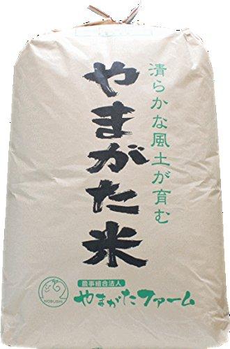 【白米にして発送】2019年山形県産 はえぬき 玄米 一等米 30�s