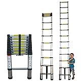 Escalera Extensible Escalera Telescópica Subir escalera telescópica para tejados de 8 m / 7 m / 6 m / 5 m / 4 m / 3 m / 2 m, Aluminio Escalera de extensión plegable con escalón extra ancho, Capacidad