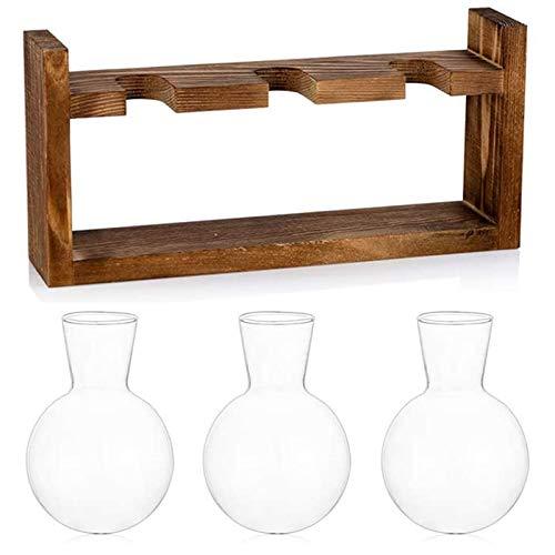 Baalaa Florero de cristal de la estación de propagación del terrario de la mesa de las plantas de escritorio de forma esférica florero de cristal, 28 cm