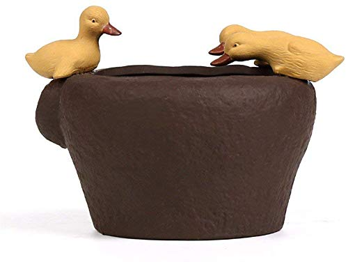 Giow Té Creativo Personalizado Adornos para Mascotas ataúd Hierba Planta acuática Pantalla
