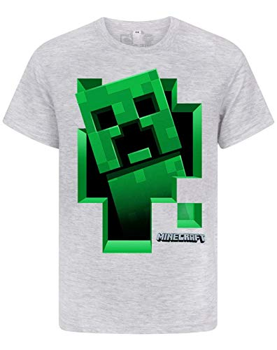 Minecraft T-Shirt Grün Creeper Jungen/Kinder Grau Kurzarm Mojang Top