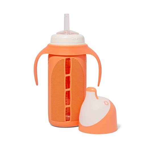 Tabor Place Glass Sippy Cup for Toddlers - The Luca | Spill-Proof | Silicone Straw | Orange | 8 oz | Liquids Never Touch Plastic | Removable Handles (Orange)