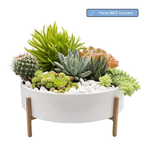 Joda 10 Inch Mid Century Succulent Planter Bowl with Stand, White Ceramic Pot with Stand, Succulent Garden Shallow Pot, Dining Table Centerpiece, Plants NOT Included