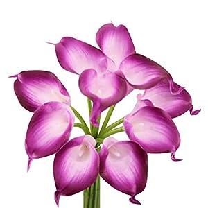 Angel Isabella, LLC Lifelike Artificial Flowers Real Touch Calla Lily Bouquet Bundle 10 Stems (Sangria Trim)