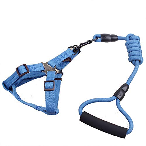 WUNIA Vest Chest Strap Dog Chain Set, Soft Durable Dog Leash Set, for Small Medium and Large Dog Walking Training,Blue,L