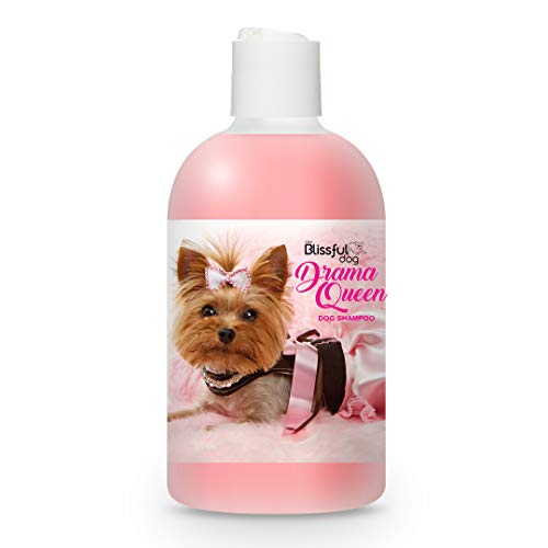 The Blissful Dog Drama Queen Luxury Dog Shampoo – Silky Dog Shampoo