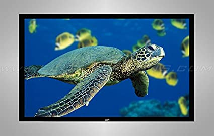 Model: R135WV1 Elite Screens ezFrame Series 135-inch Diagonal 4:3 Fixed Frame Home Theater Projection Screen