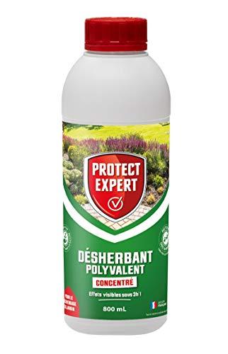 PROTECT EXPERT PROHERBIO800 Désherbant Polyvalent Concentré 800ml, Longue durée: Jusqu'à 4 semaines