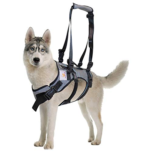 PET FRIENDZ Dog Lifting Harness for Front and Rear Legs - Dog Sling for Front and Back Legs, Rehabilitation Sling Harness, Dog Lift, Hip Support Harness to Help Lift Dogs Front an Rear - XL Breed