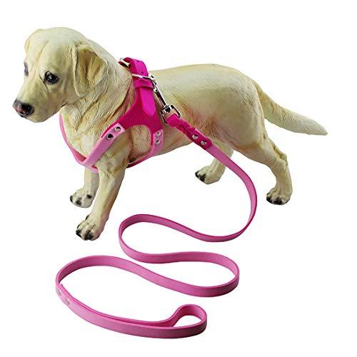 JSANSUI Kitten kraag Ademende hond borstband, fluweel klassieke bril Type huisdier borstband hond Traction kraag hond benodigdheden, Maat: L, Magenta