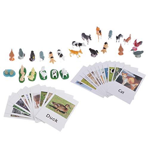 CUTICATE 2 Sets Kinder Sprach-Lernspiel, Montessori Sprachentwicklung Lernspielzeug, 24 Plastik Tierfiguren mit 24 Wortschatz-Lernkarten Flashcards Spielset - A+B