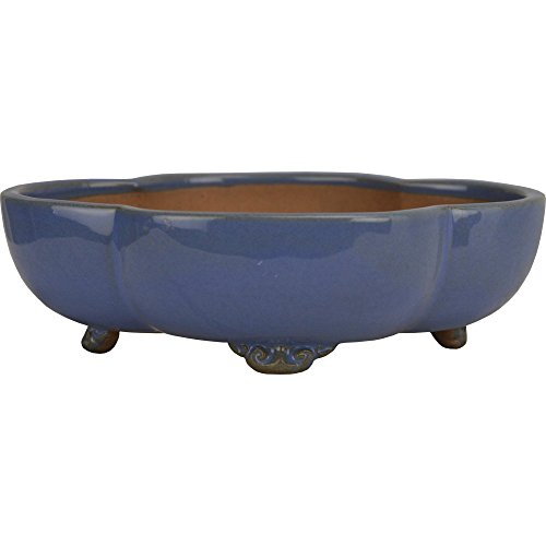 6' Bonsai Tree Yixing Pot - Beautiful Yixing Clay Accent Container; Great for Cacti, Flowers, House Plants & Herbs from the experts at Bonsai Outlet (YX261-2)