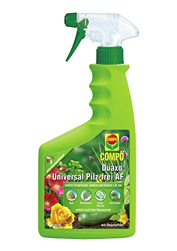 Compo -   Duaxo Universal
