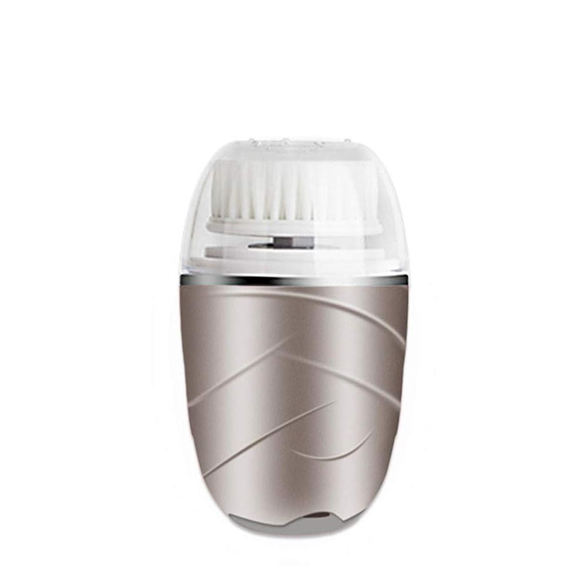 スーダン建てる圧倒的電動洗顔器 音波洗顔-防水 毛穴ケア 防水型美顔用 フェースケア ケース付き2段階スピード敏感肌用 男女兼用 360度回転肌質改善 各種肌質に対応 敏感肌