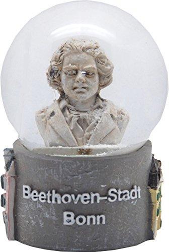 30066 Schneekugel Souvenir Beethoven Stadt Bonn 65mm Durchmesser