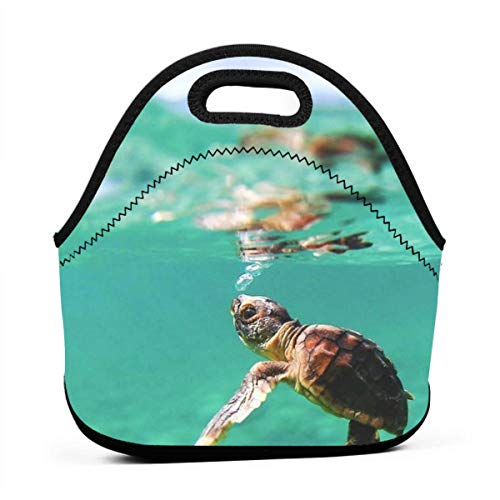 Neoprene Turtle Baby Under Sea Ocean Turquoise Portable Lunch Bag Carry Case Tote with Zipper Strap Box Container Bags Picnic Outdoor Travel Fashionable Handbag Pouch for Women Men Kids Girls