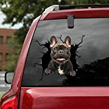 French Bulldog Crack Car Sticker Dogs Lover Window Apply Funny Decals