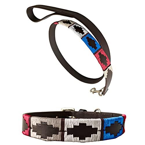CARLOS DIAZ Echtleder gewachstes gesticktes Polo-Hundehalsband + passende Leine L