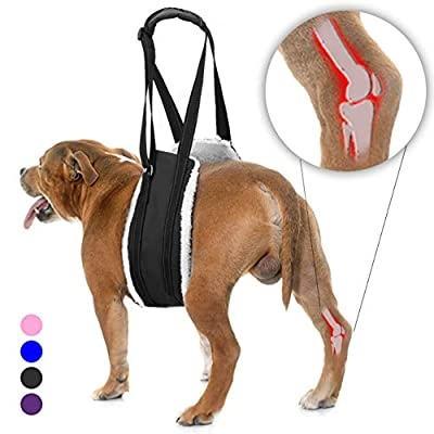 Bolux Portable Dog Sling Rear Legs - Dog Lift Harness for Back Legs, Adjustable Hip Support Harness for Canine Aid Arthritis for Small Medium & Large Dogs Rehab Poor Stability Dogs Walking