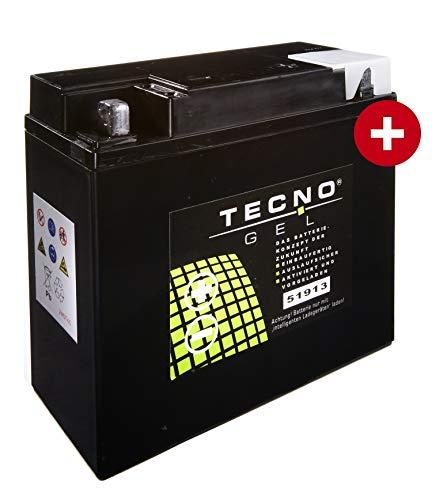 TECNO-GEL Motorrad-Batterie 51913 (51814), 12V Gel-Batterie 22AH, 186x82x171 mm inkl. Pfand