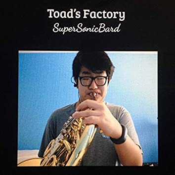 Toad's Factory (Cover)