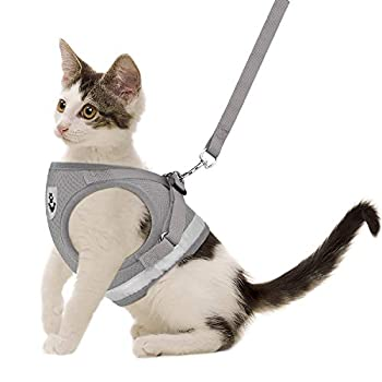 Cat Harnesses and Puppy Harness with Leashes Set Escape Proof Cat Harness Adjustable Reflective Soft Mesh Vest Fit Puppy Kitten Rabbit Ferrets s Outdoor Harness  Grey S Chest  10  - 12