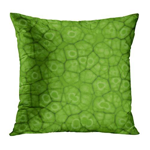 EU Chlorophyll Abstract Green Pattern Pflanzenzellen unter dem Mikroskop Blattbiologie Biotechnologie Botanik Schließen Home Decor Quadrat Kissen Kissenbezug 18x18 Zoll