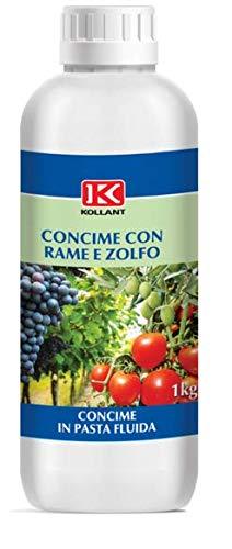 KOLLANT lt 1 concime FUNGICIDA in Pasta fluida microelementi Rame E ZOLFO E Boro