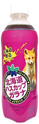 [訳あり(賞味期限 2020年12月23日)] サッポロウエシマコーヒー 北海道ハスカップガラナPET 500ml ×24本