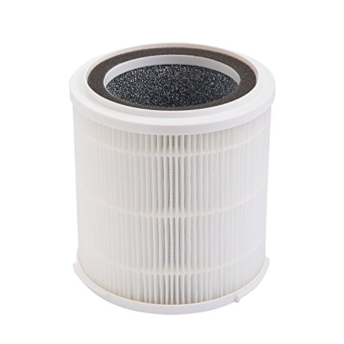 SilverOnyx True HEPA Filter Replacement (5-Speed, Large Room) 4-in-1 Air Purifier HEPA Replacement Filters - Best HEPA H13 Filter for Allergies, Pets, Smoke and Dust. for Large Room 500 sq ft. White