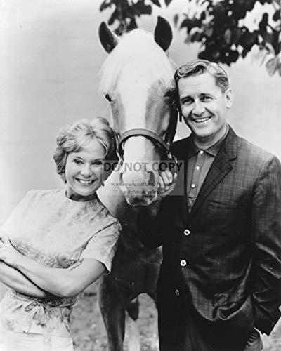 bucraft Alan Young, Connie Hines et Mister ED - Photo publicitaire 8X10 (ZY-129)