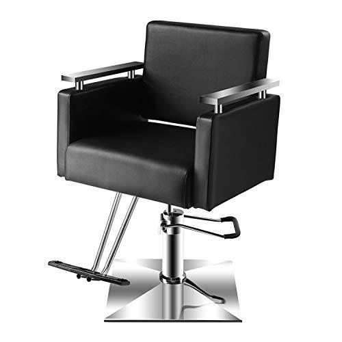 Baasha Salon Chair with Stainless Steel Armrest, Salon Styling Chairs for Hair Stylist, Black Hair...