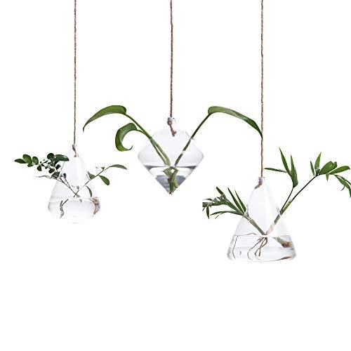 Hyindoor Geometrische Hängevase Hydroponik Glasvase Blumenvase Pflanze Hängendes Terrarium Dekovase, 3 Stück