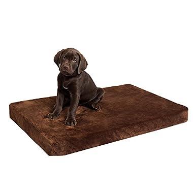 BirdRock Home Memory 3  Memory Dog Bed | Ultra Soft Plush Pet Bed | Pet Mat (34 x 22 , Brown)