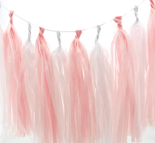 Ballerina Garland, White & Light Pink Summer Party Tassels (Set of 10) - Princess Party Supplies, Little Girl Tissue Paper Tassel, Dancer Birthday Party Decorations Banner Backdrop