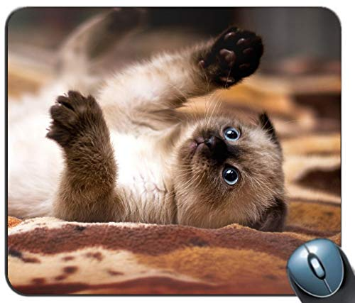 Mauspad mit rutschfester Gummibasis Wasserdichtes Standard-Gaming-Mauspad mit genähten Kanten (Kitten Cat Pattern)