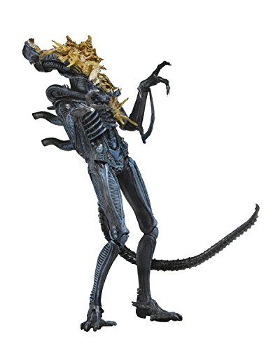 Aliens- Figura Warrior dañado (Neca NEC0NC51639) , color/modelo surtido