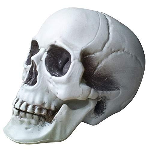 CXZC - Crneo de plstico de aspecto realista para decoracin de Halloween, con forma de crneo de mesa (15 x 16 x 22 cm)