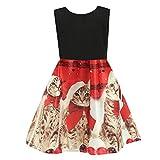 Riou Weihnachtskleid Mädchen Prinzessin Lang Ärmellos Weihnachten Kinder Baby Tutu Mini Elegant Ballkleider Abendkleid Elegant für Hochzeit Party Outfits Kleidung Set (110, Rot)