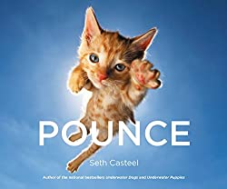 POUNCE cat book