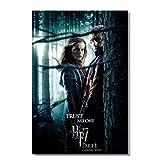 Feitao Emma Watson Hermine Poster Rupert Grint Ron Weasley