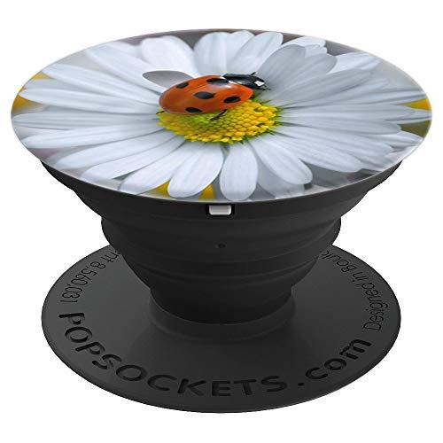 Ladybug Beetle Ladybird Orange Ladybeetle White Daisy Flower PopSockets Agarre y Soporte para Teléfonos y Tabletas