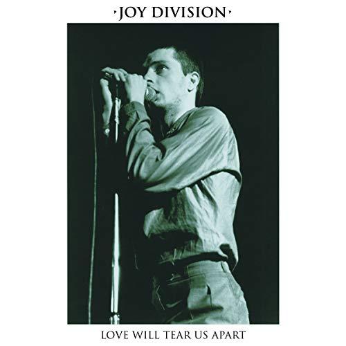 Love Will Tear Us Apart [Vinyl LP]