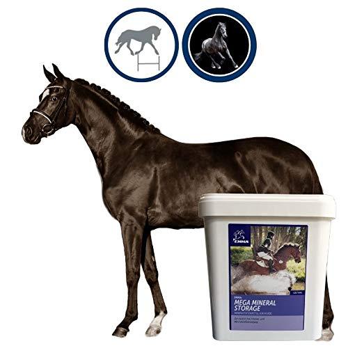 Mineralfutter Pferde Vitamin B komplex I Biotin Zink Selen Bierhefe I Vitamine Mineralstoffe Spurenelemente I Vitamin A B D E C K Mineralien I Immunsystem stärken Senior Pferd Pellets getreidefrei 5Kg