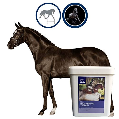 Mineralfutter Pferde I Vitamin B komplex I Biotin Zink Selen Pferd I Pferdemineral I Vitamine A D E C K3 B1 B2 B6 Mineralien I Huf Fell Haut I Senior Mineral Pferd Fohlen Pony Pellets 5Kg