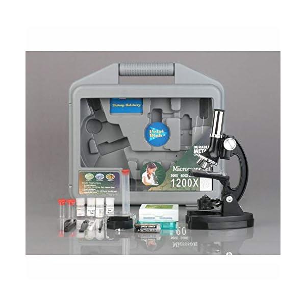 AmScope-KIDS M30-ABS-KT2 120X-240X-300X-480X-600X-1200X Metal Arm Kids Children Biological Microscope Kit