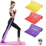 elastici fitness (set di 3), bande elastiche fitness con 3 livelli di resistenza, fasce elastiche fitness ideale per pilates, yoga, riabilitazione, allenamento di forza e flessibilità, stretching