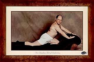 Buyartforless George Costanza (The Timeless Art of Seduction) - Seinfeld TV Show 36x24 Art Print Poster Wall Decor Humor Famous Photo Pop Culture