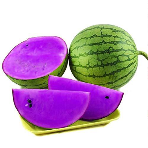 Acecoree Samen- 10pcs Wassermelonensamen Love F1, Seltene Bunte Melonen Samen grüne Wassermelonen Bio Obst Saatgut